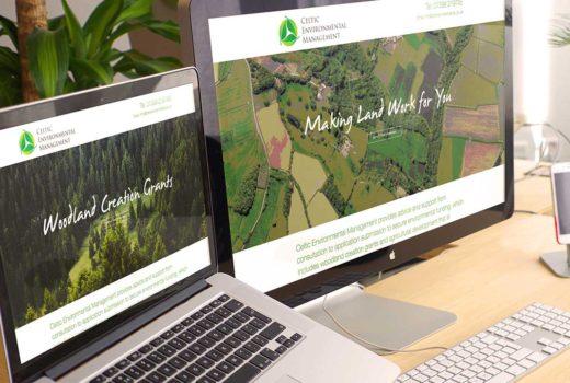 Celtic Environmental Management